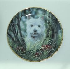 WESTIES PLATE - HIDE & SEEK (G3840E)