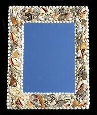 "Assorted Shell Wall Mount Mirror 15"" X 19"" Nautical Seashore Costal Beach Decor"