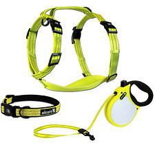 alcott Visibility Retractable Dog Leash or Harness or Collar - NEON Yellow S M L