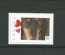 PICTURE POSTAGE   P   Hearts frame    2588a  PERSONALIZED     MNH  # 5