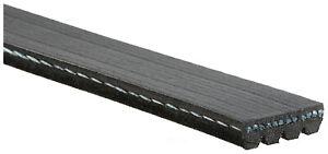 Serpentine Belt-Standard ACDelco Pro 4K500 fits 89-95 Ford Taurus 3.0L-V6