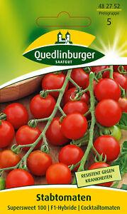 Stabtomaten Supersweet 100 Solanum lycopersicum 482752 Quedlinburger AR3497