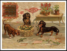 DACHSHUND DOGS AND BASKET OF CRAYFISH CHARMING VINTAGE STYLE DOG PRINT POSTER