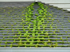 Moss Killer (roof / patio / hardsurface) fast acting formula NEW