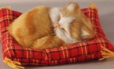 Katze Auf Tartan Kissen Ingwer Katze 10.5cm x 10cm