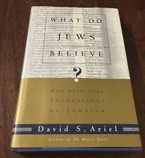 What Do Jews Believe?: The Spiritual Foundations of Judaism, Ariel, David, VG