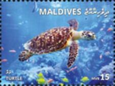 Maldives - 2019 Turtle - Stamp - MLD1801local02a