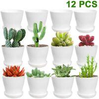 12 Pack White Plastic Plant Pots (Thick) 4 Inch Round Flower Plant Nursery Pots