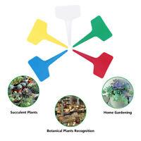 KE_ BH_ ALS_ 100pcs PVC Plastic PlantS T-type Flower Tags Markers Nursery Gard
