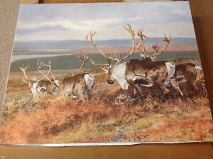 1986 Caribou Painting On Canvas / Litho Print 16 x 20  #85380