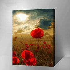 Diy Oil Painting paint  by Number Kit for Adult Decor Picture-Some Rerd Flowers