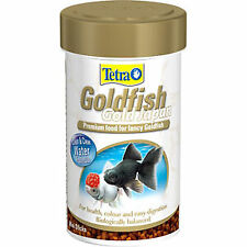 Goldfish Gold Japan