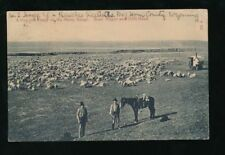 Wyoming Pre - 1914 Printed Collectable USA Postcards