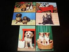 Dog Collectable Postcard Sets
