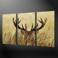 LMOP196 3pcs 100% hand-painted wall decor animal OIL PAINTING on CANVAS ART
