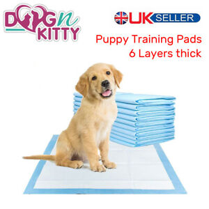 HEAVY DUTY DOG PUPPY LARGE TRAINING WEE WEE PADS PAD FLOOR TOILET MATS 60 x 60cm