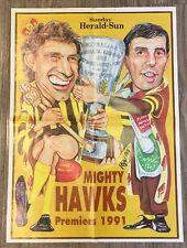 1991 Hawthorn Hawks Rogers/WEG Poster 100% Original