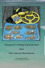"""Pulsepower!"""": Finding Gold at the Shore with a Pulse Induction Metal Detector"""