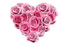 STUNNING HEART SHAPE PINK ROSES CANVAS #814 QUALITY FLORAL PICTURE A1 WALL ART