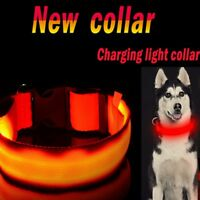 UK USB Rechargable Dog Collar LED Flashing Light Up Safety Pet Belt Waterproof