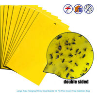 10x Flies Sticky Paper Trap Catchers Glue Board Home Pest Control Fly Insects h