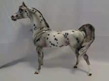 Custom Peter Stone DAH 2013 Leopard Appaloosa Arabian Stallion Windswept CM