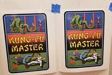 Data East Kung Fu Master Arcade Sideart