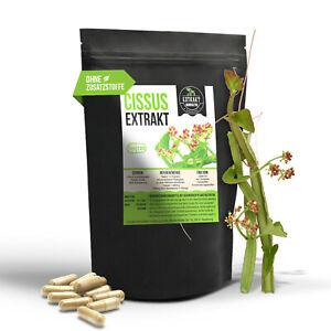 Cissus Quadrangularis EXTRAKT | 40% Ketosterone | 120 KAPSELN | ohne Zusätze