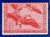 US #RW11 = MNH $1 Federal Duck Stamp 1944 'WHITE-FRONTED GEESE' ~ Free Shipping!