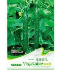 FD1389 Cucumber Seed Cucumis Sativus Linn Seed Hot ~1 Pack 20 Seeds~