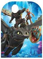 How to Train Your Dragon 3 Child Size Stand In Official Cardboard Cutout - Party