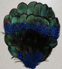 ONE GUINEA/PHEASANT FEATHER PAD - ROYAL BLUE ; Headband/Hats/Craft/Millinery