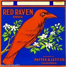 Riverside Red Raven Bird Orange Citrus Fruit Crate Label Vintage Art Print
