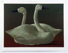 Vintage ALLEN SAALBURG Contrary View Birds Swans Screenprint Print #Z199