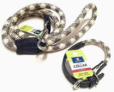 Dog Collar Leash Set Blue Cream  Pet Walking XS Lead Safety Puppy Adjustable