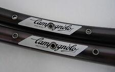 Campagnolo Kilimingiaro Rim Set Mountain Bike Clincher Pair Vintage MTB 32h NOS