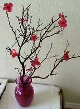 "10 Red Fresh-Cut Manzanita Branches for Vertical Centerpieces *TEN!* 16""-20"""