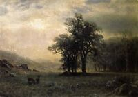 Huge Oil painting Albert Bierstadt - Deer in a Landscape with forest canvas 36""