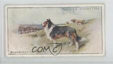 1925 Player's Dogs Tobacco Base #6 Rough-coated Collie Non-Sports Card 1x2