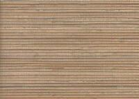 Wallpaper Real Natural Grasscloth Textured Sisal  Bamboo Tan Beige on Taupe