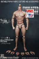 """ZC Toys 1/6 12"""" Male Wolverine Muscular Body Figure For Hot Doll Model"""