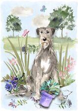 "Irish Wolfhound Dog (4"" x 6"") Blank Card / Notelet Design By Starprint"