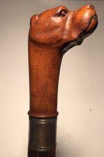 Superb Antique Hand Carved, Figural PITBULL DOG Head, Walking Stick Cane