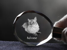 Balinese, Cat Crystal Round Keyring, High Quality, Crystal Animals Ca