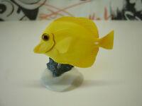 Tropical fish Mini Figure Hemigrammus bleheri Gashapon Japan