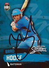 ✺Signed✺ 2015 2016 ADELAIDE STRIKERS Cricket Card BRAD HODGE Big Bash League