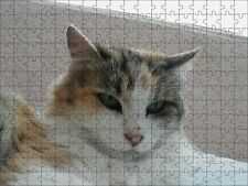 Puzzle personalizzato con vostra foto formato a4 pezzi 192