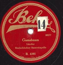 Bischofshofener Bauernkapelle : Gamsbuam  + Holzknecht