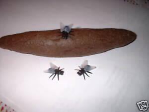1 Fake Dog Poo/Turd/Crap Long. With 3 Fake Flies. Guaranteed delivery