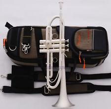 Professional Satin Silver Trumpet Horn With Monel Valves Piston Pro. Case